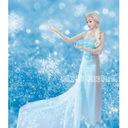 J777 Movies Frozen Snow Queen ELSA Cosplay Costume Dress tailor HANDMADE CUSTOM