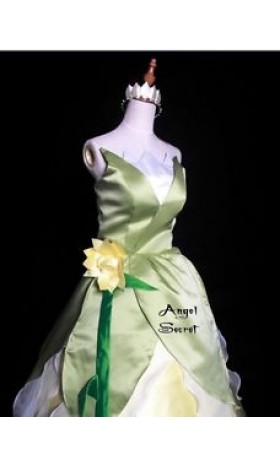 P123  Princess and Frog Tiana Costume