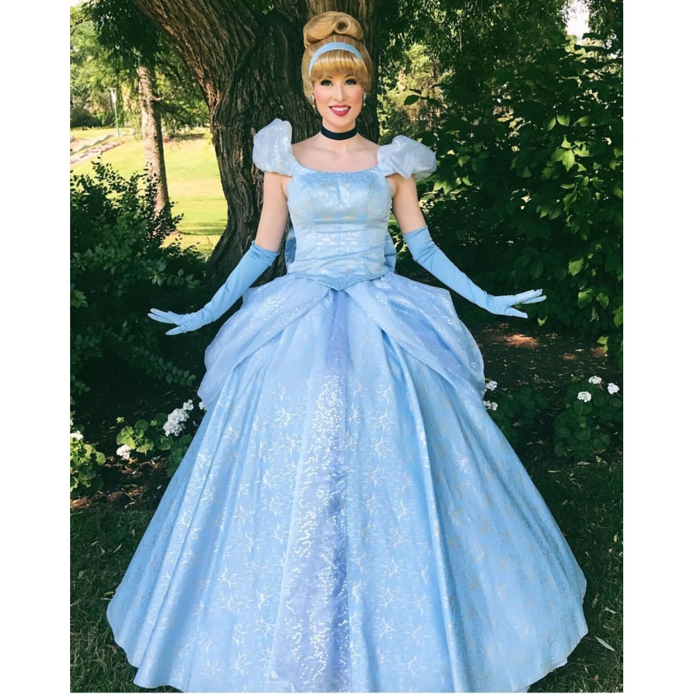 76d97bc6516 P259 Cinderella park version costume princess blue gown SILVER ...