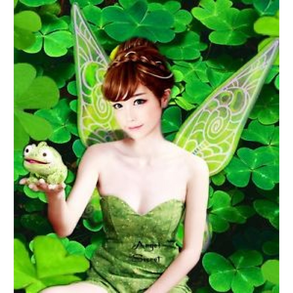 Wn1 Tinkerbell Fairy Cosplay Costume Wings Wedding Shoot -3647