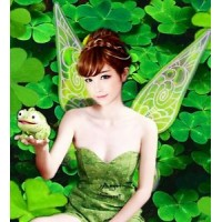WN1 Tinkerbell Wings