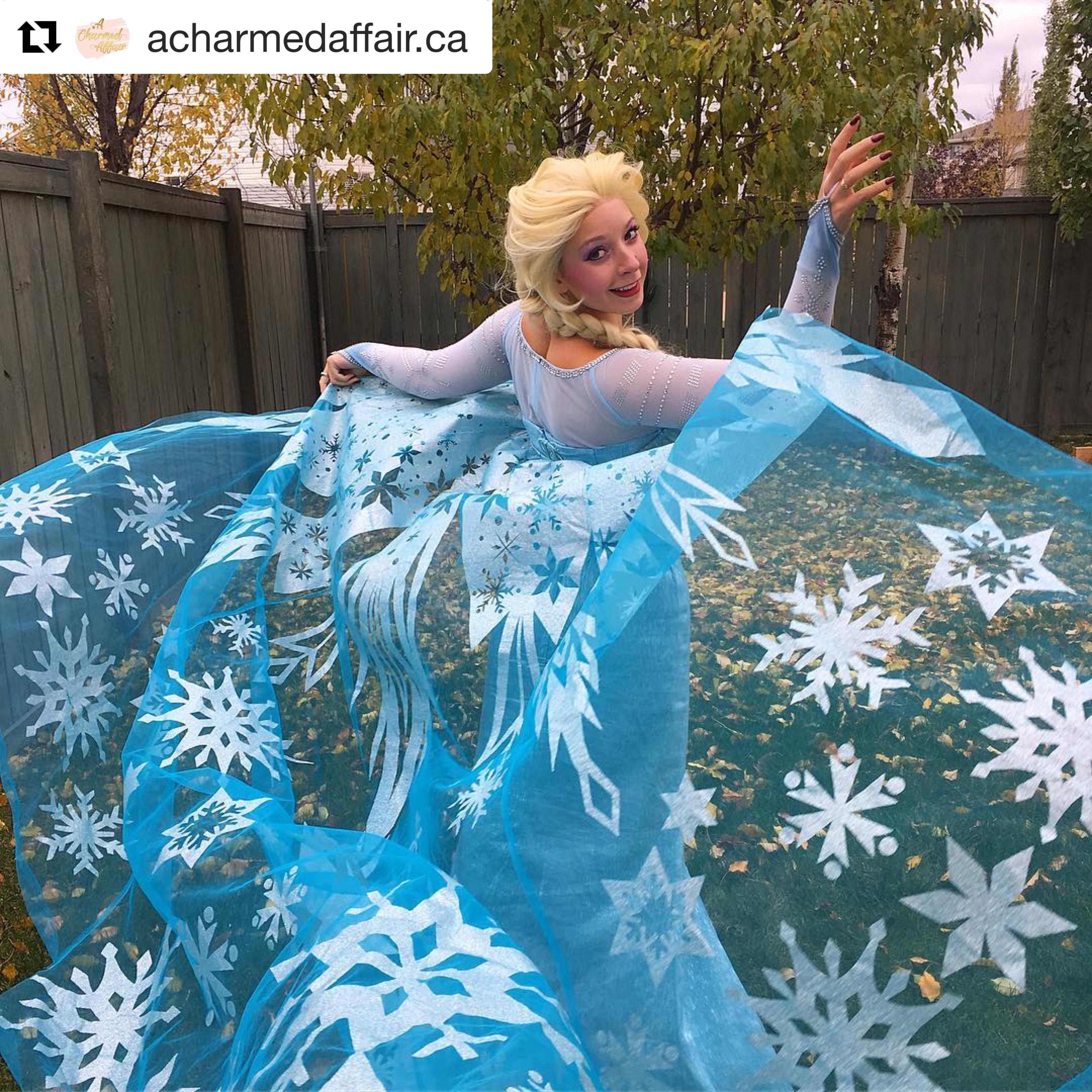 cloak A for Frozen Snow Queen ELSA Anna Cosplay Costume Dress tailor cloak cape