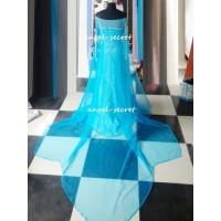 Cloak A plain blue cloak Elsa cape