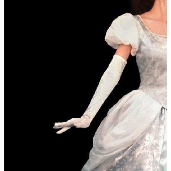 GL159 Cinderella princess matching blue Gloves only.