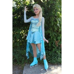 J737ice Elsa Ice skating dress