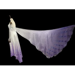 CL908 Frozen2 Elsa show yourself five spirit cape only