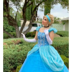 P131  Princess Cinderella Costume blue classic sparkle