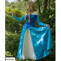 P136B  Princess sleeping beauty Costume blue version