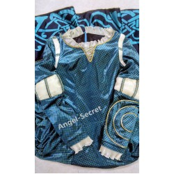 p166 women Merida gown Movies Cosplay Costume dress brave 2012 velvet with printing come with belt buckle sash