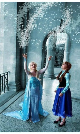 J711 Movies Frozen Snow Queen ELSA Cosplay Costume Dress CUSTOM tailor HANDMADE